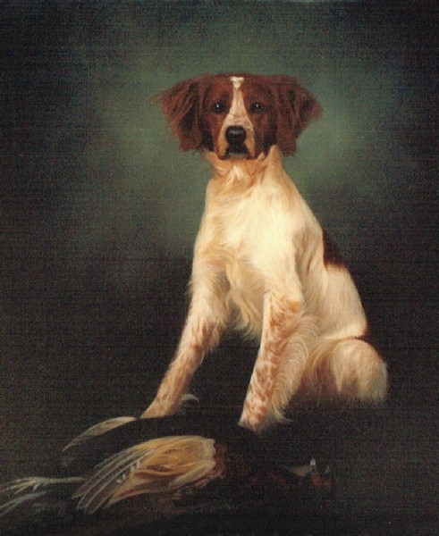48a65988390d Pet Portrait Oil Painting of a Dog with a Pheasant.