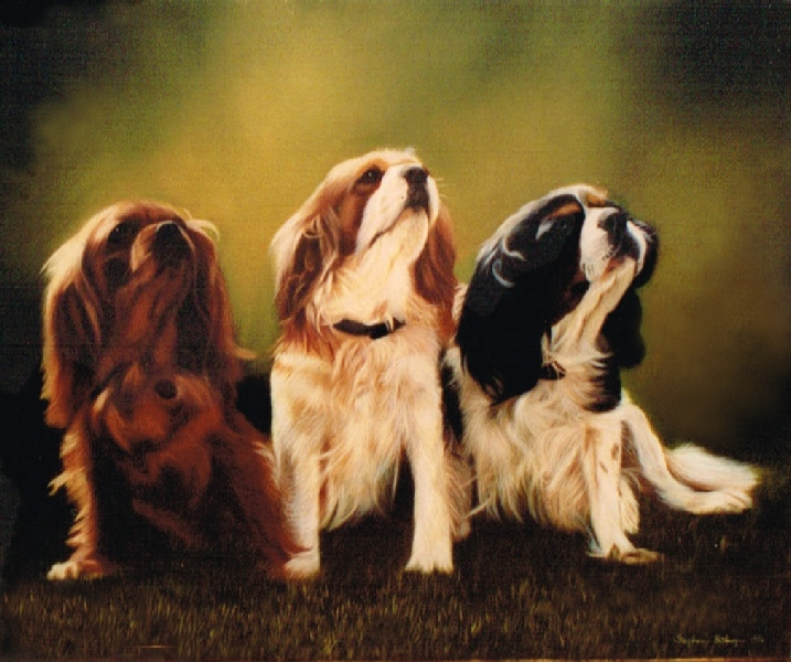 7348dbb442cf Pet Portrait Oil Painting of Three Dogs.